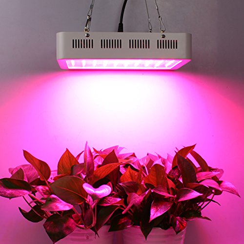 Roleadro LED Grow Light, Galaxyhydro Series 300W Indoor Plant Grow Lights  Full Spectrum With UVu0026IR For Veg And Flower